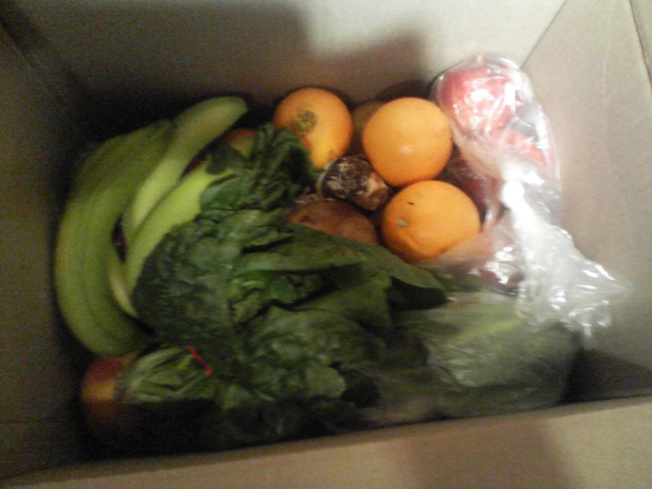 foodinbox.jpg
