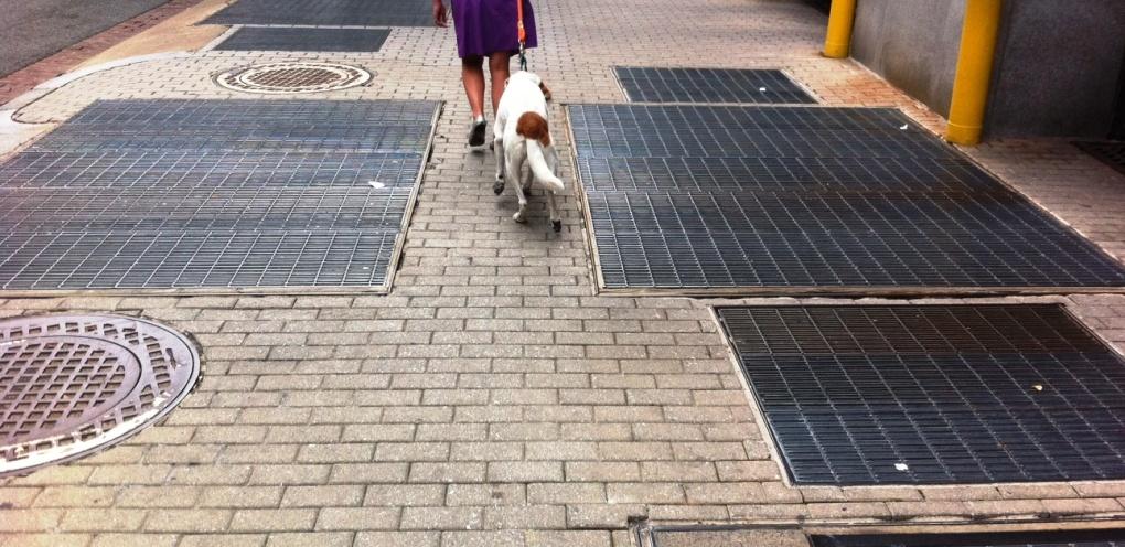 sidewalk grates | Valentino Valdez | Flickr